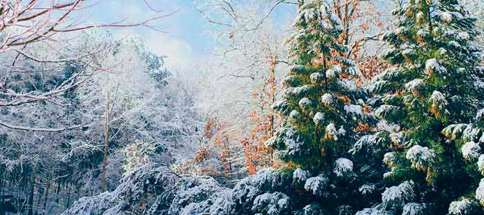 winter is a wonderful time to enjoy shopping, dining, and the wonderful sights in Bristol, Bucks County PA